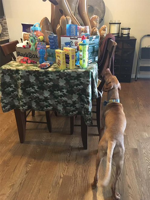 A puppy shower, hosted by Clifford's Mom's co-workers was a huge hit. Clifford, of course, was the star of the party.